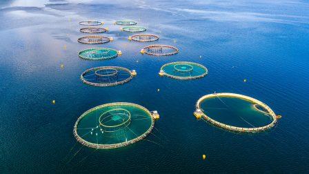 aquaculture-balik-ciftlikleri-pe100